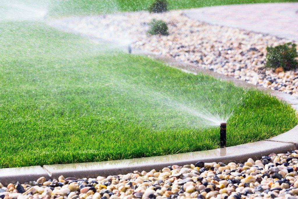 Water sprinkler watering the grass