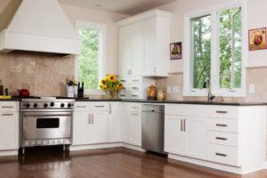 Traditional kitchen interior