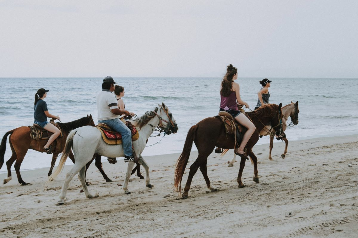 group of people riding