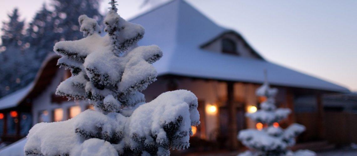 winter home concept