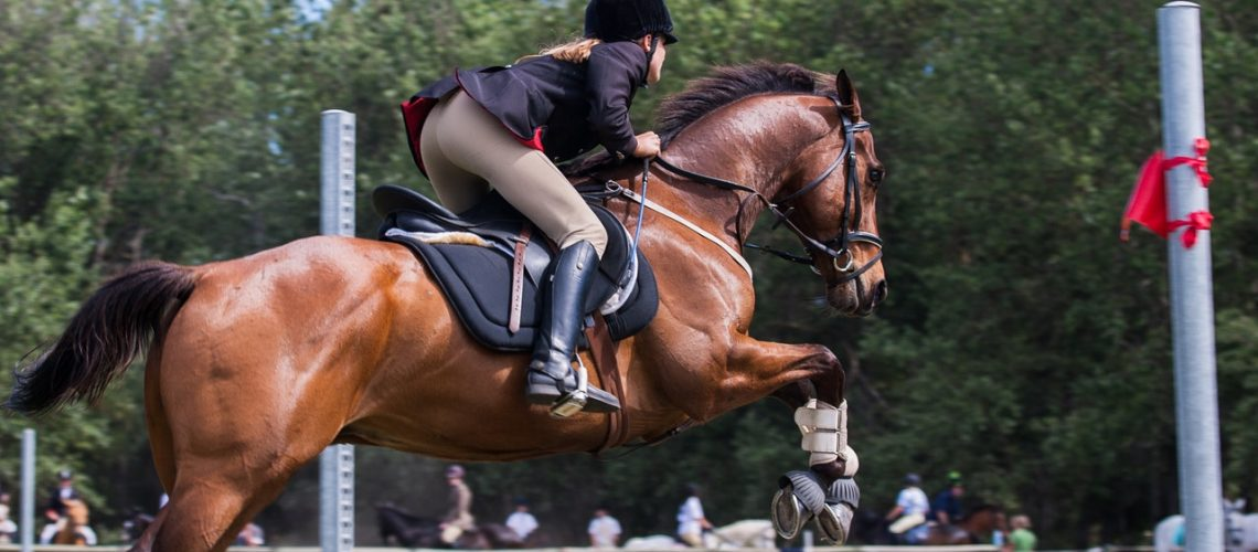 woman jumping a horse